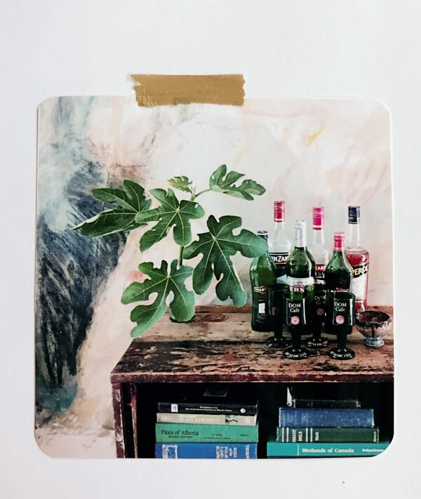 shelf vignette with fig leaves, liquor bottles, books and painting backdrop